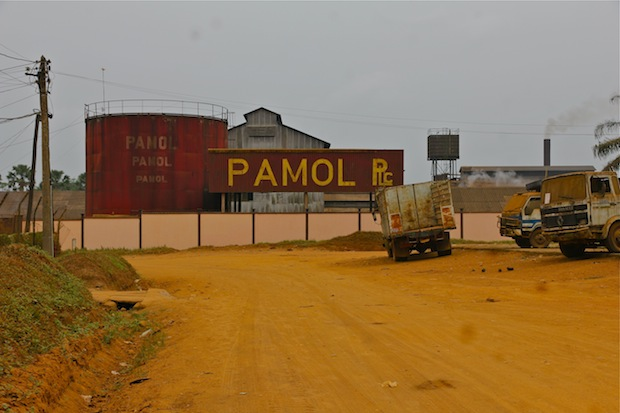 Large-scale oil palm plantations have existed in SW Cameroon for decades, but have brought little in the way of development.